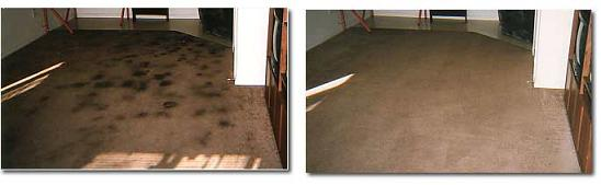 Before and After Picture of Stain Removal