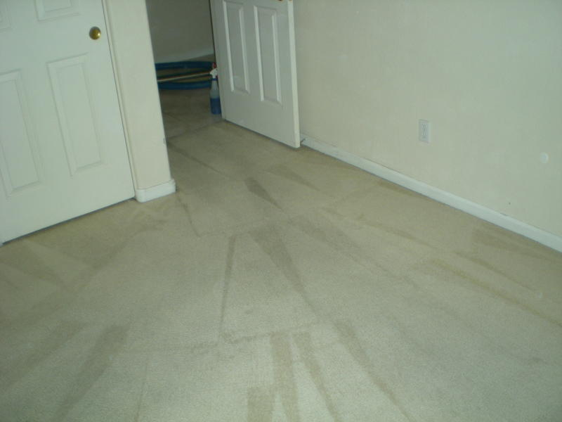 Picture after carpet cleaning of a Peoria home