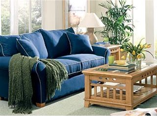 Upholstery Cleaning Service in Phoenix, AZ Picture